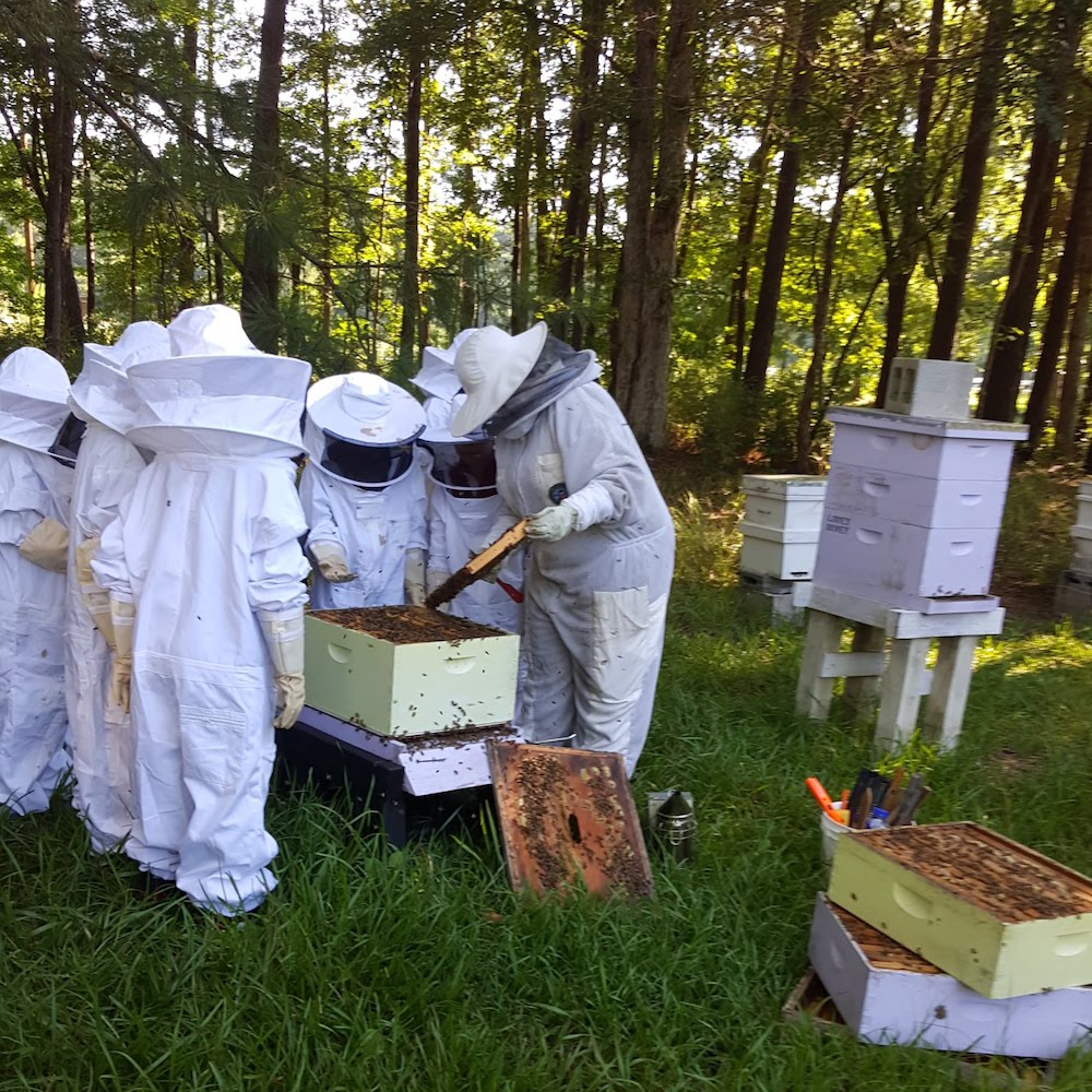 Michelle with students learning beekeeping
